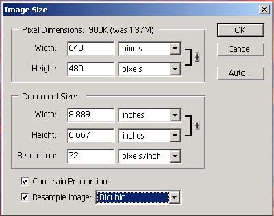 picture of image size dialog box